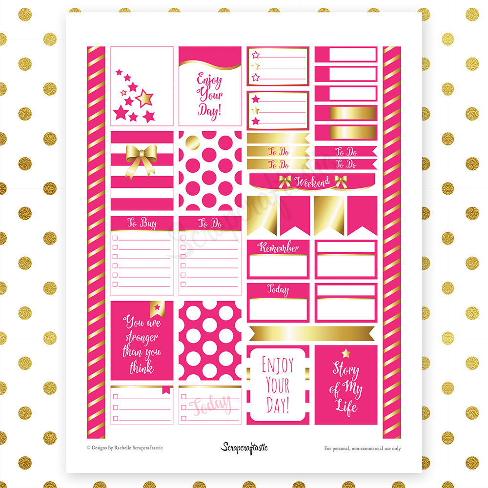 All Hot Pink Silver Pro Printable Planner Stickers for Erin Condren Life Planner