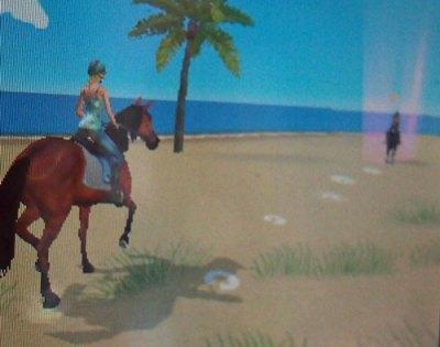 horses 3ds beach
