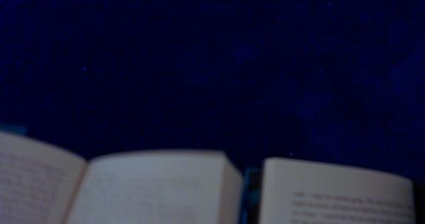 Reading Under the Stars