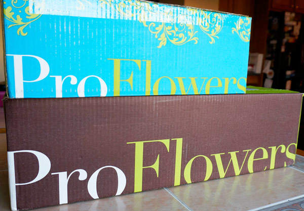 ProFlowers delivered to my doorstep with holiday decorations.