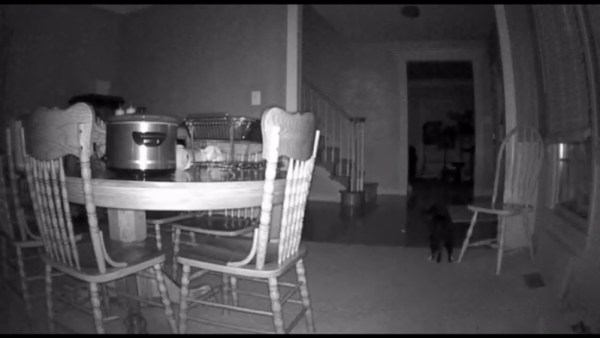 NETGEAR Arlo night vision photo