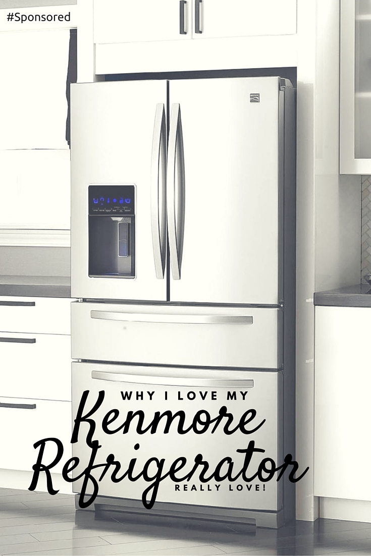 Falling In Love With My New Kenmore Refrigerator Scraps