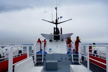 Reykjavik Elding whale watching