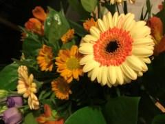 december bloemen