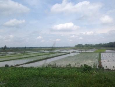 Route Indonesie trein naar Yogyakarta 3