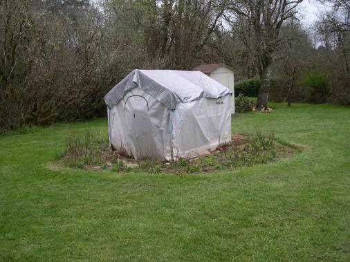 My Greenhouse, the bed around it is where I grow my different varities of tobacco.