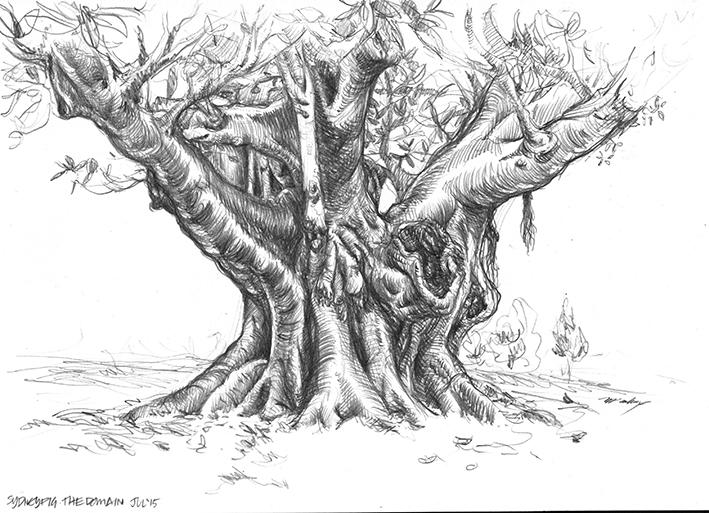 Domain National Tree Day 2015 01 LR