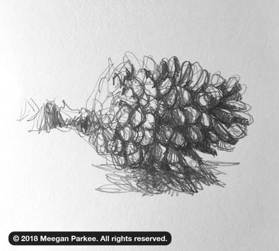 Exercise_1_pinecone_2