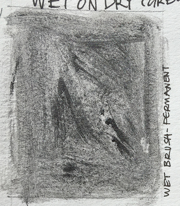 Day1_permanent_wet_brush_on_dry_paper