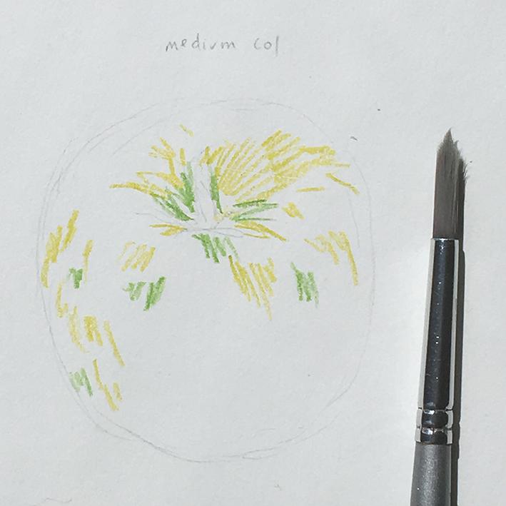 Inktense_apple_med_colour_dry_with_brush
