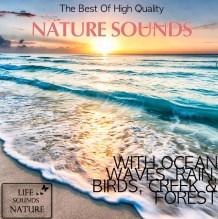 aboriginal_album_cover