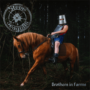 Steve n Seagulls - Brothers In Farms small