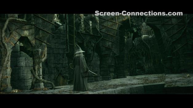 The.Hobbit.The.Desolation.of.Smaug-2D.Blu-Ray-Image-03