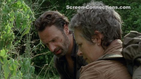 The.Walking.Dead-Season.4-BluRay-Image-04