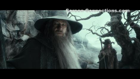 The.Hobbit.The.Desolation.of.Smaug-EE-2D.BluRay-Image-03