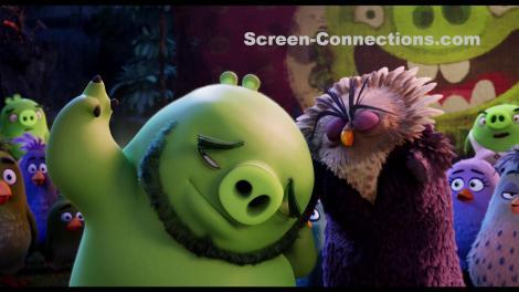 The.Angry.Birds.Movie-Blu-ray.Image-03