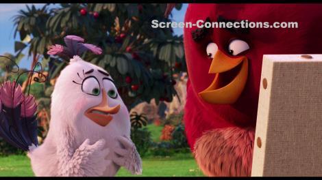 The.Angry.Birds.Movie-Blu-ray.Image-05