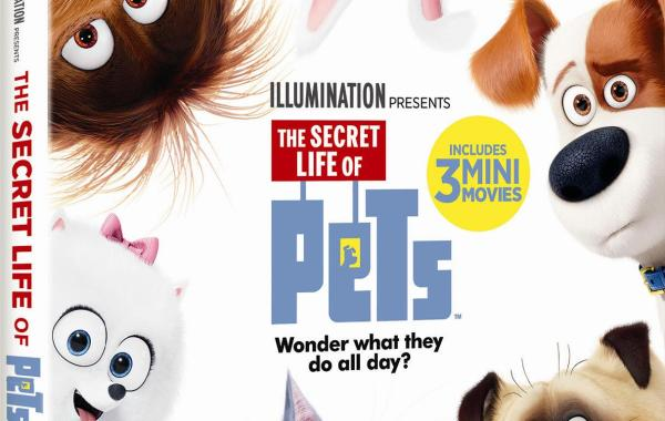[GIVEAWAY] Win 'The Secret Life Of Pets' On Blu-ray Combo Pack: Arrives On 4K Ultra HD, Blu-ray, Blu-ray 3D & DVD December 6, 2016 From Universal 29
