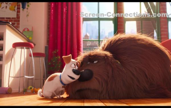 [Blu-Ray Review] 'The Secret Life Of Pets 3D': Now Available On 4K Ultra HD, Blu-ray 3D, Blu-ray, DVD & Digital HD From Universal 27