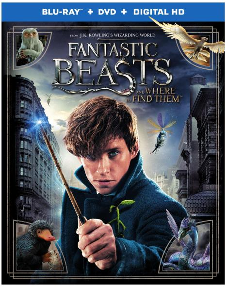 fantastic-beasts-and-where-to-find-them-2d-blu-ray-cover