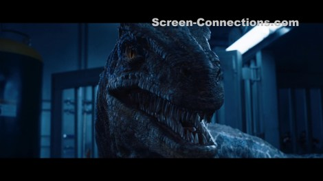 [Blu-Ray Review] 'Jurassic World: Fallen Kingdom': Available On 4K Ultra HD, 3D Blu-ray, Blu-ray & DVD September 18, 2018 From Universal 6