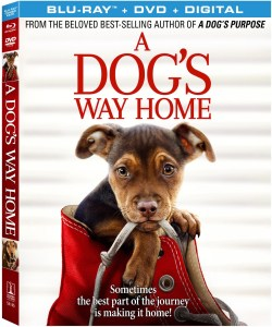 'A Dog's Way Home'; Arrives On Digital March 26 & On Blu-ray & DVD April 9, 2019 From Sony Pictures 1