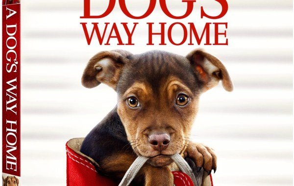 'A Dog's Way Home'; Arrives On Digital March 26 & On Blu-ray & DVD April 9, 2019 From Sony Pictures 7