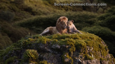 [Blu-Ray Review] The Lion King (2019): Now Available On 4K Ultra HD, Blu-ray, DVD & Digital From Disney 6