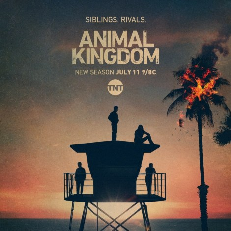 'Animal Kingdom'; The Fight For Control Of The Kingdom Begins In The First Trailer For Season 5 2