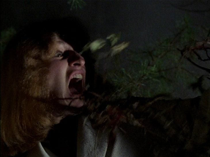ff-evil-dead1981-2
