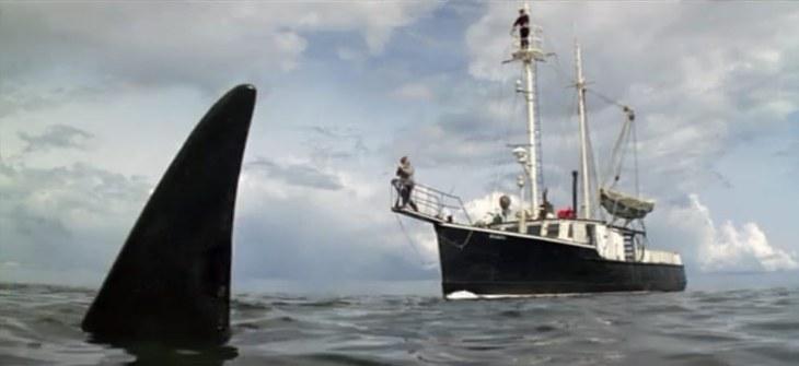 ff-orca-1