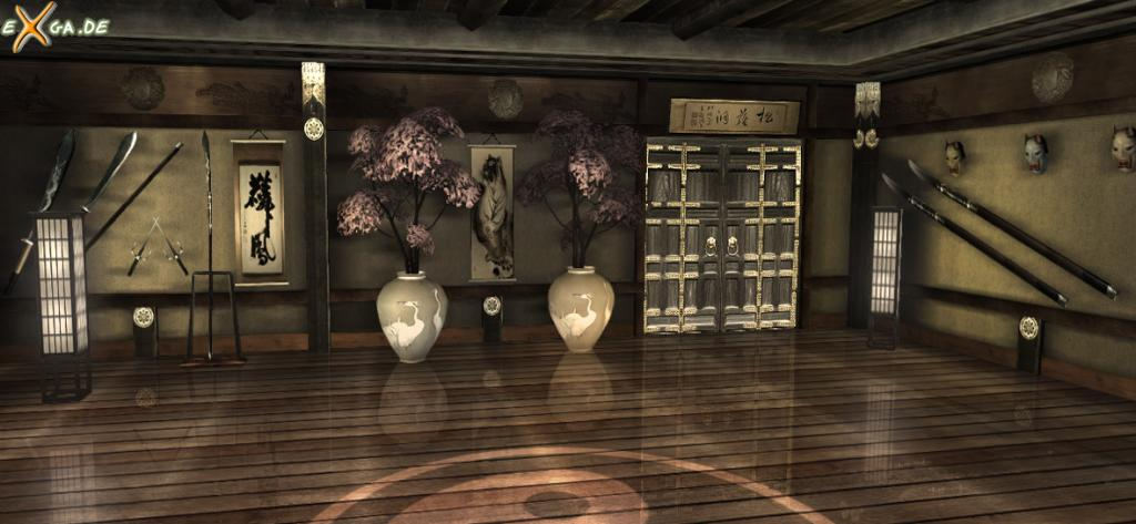 S Dojo Fighting Room Screenshot Wallpaper For Red Steel