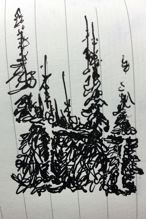 evergreen-trees-chairlifts-sketch