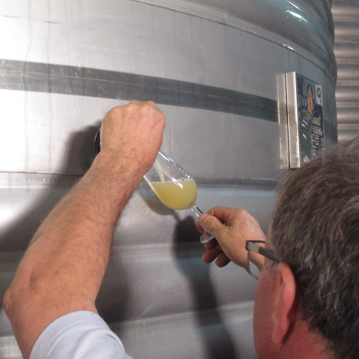 Grape juice, as yet unfermented, is poured from the stainless steel vat.