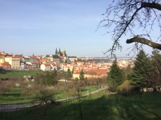 Prague from Petrin Hill