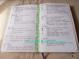 Daily and Bullet Journaling in One Moleskine - January update