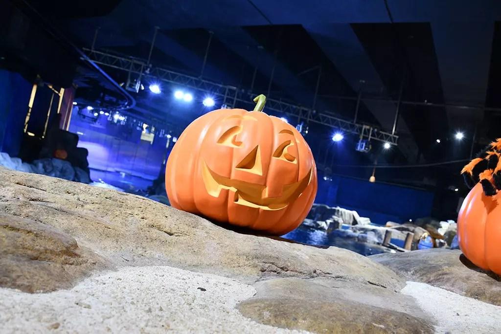 Halloween Fest 2017 at Ocean Park Hong Kong.