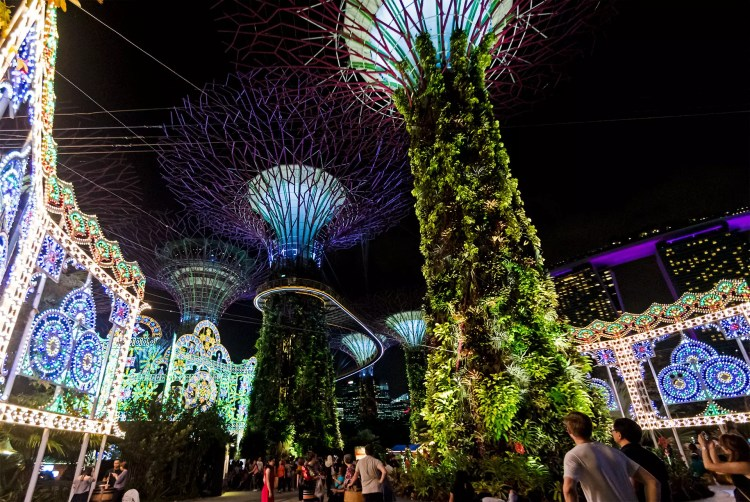 Gardens by the Bay Christmas Wonder 2017