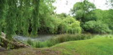 riverside_manor_banner_mooi_river