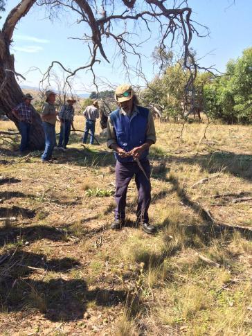 Elder Rod Mason demonstrating traditional burning techniques at a cultural burning workshop