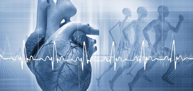 Cardiology Transcription