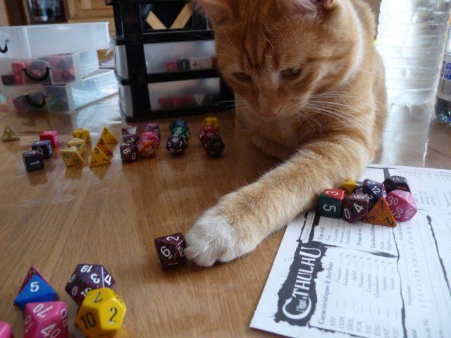 Caramel  joue avec les dés de scriiipt