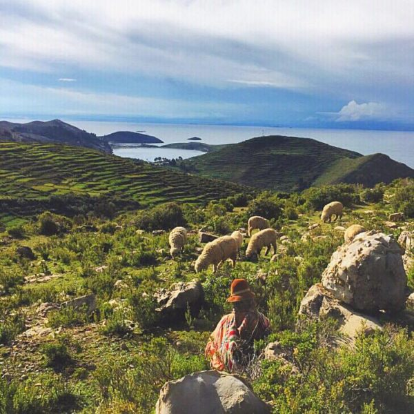Things to do in Bolivia - Isla Del Sol