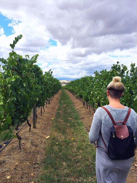 9 Best things to do in Melbourne - Take a winery tour