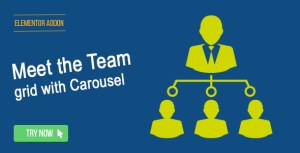 Elementor Page Builder - Meet the Team Grid with Carousel