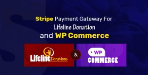 Stripe Payment Gateway for Lifeline Donations