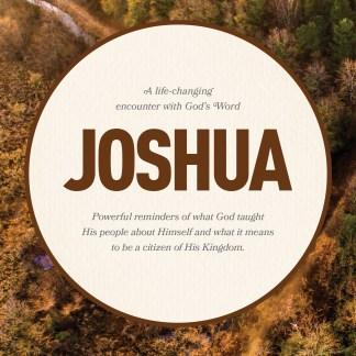 Joshua LifeChange Bible Study
