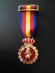 Cruz de Oro a la Constancia (20 años)