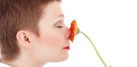 descrizione sensoriale olfattiva