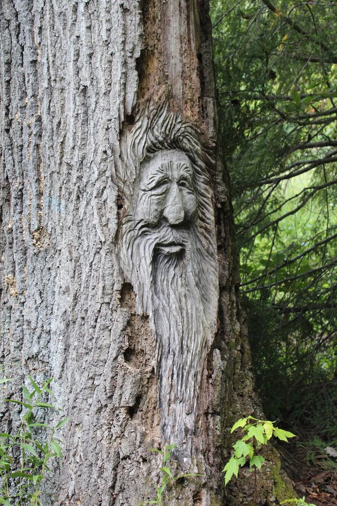 face_tree_carving_wood